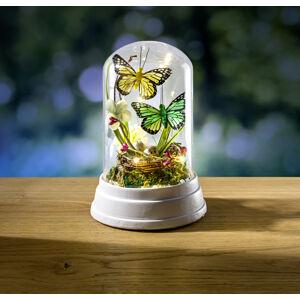 Magnet 3Pagen Dekoratívne sklo s LED a motýľmi